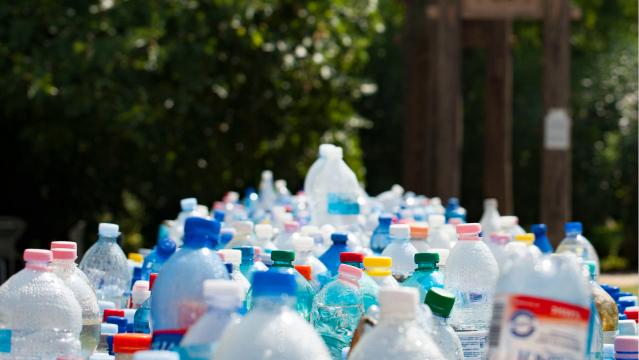 many plastic bottles